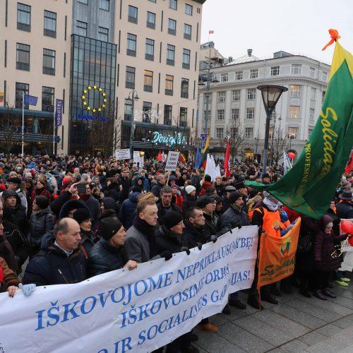 """Protestas """"Paskutinis skambutis""""  © Vilijos Virkutytės, Pauliaus Peleckio/Fotobanko nuotr, Dainiaus Labučio (ELTA) nuotr."""