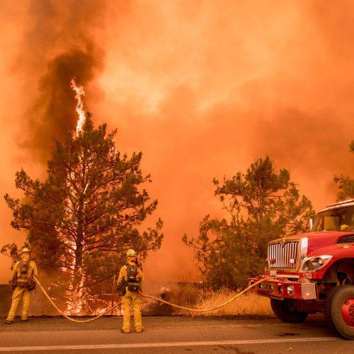 Kalifornijoje kovojama su didžiuliais miškų gaisrais  © Scanpix nuotr.