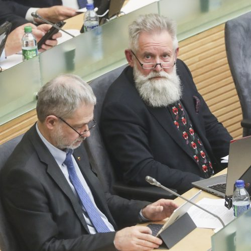 Seime – valstybės biudžeto svarstymas  © Pauliaus Peleckio / BFL, Mariaus Morkevičiaus / ELTOS nuotr.