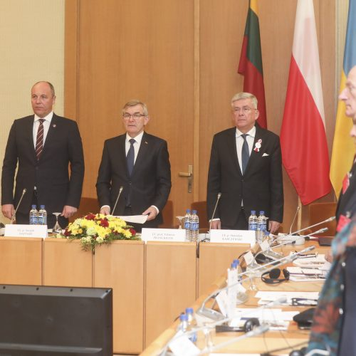 Prasidėjo Lietuvos, Lenkijos ir Ukrainos Parlamentinė Asamblėja  © M. Morkevičiaus / ELTOS nuotr.