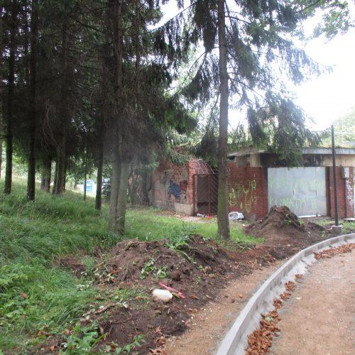 Draugystės parko rekonstrukcija  © Valdo Kasperavičiaus nuotr.
