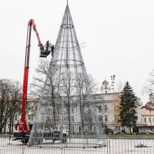 Katedros aikštėje ruošiama Kalėdų eglė  © V. Skaraičio / BFL nuotr.