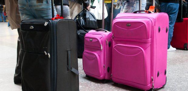 Perspėja: asmeniniame bagaže draudžiami gyvūniniai produktai