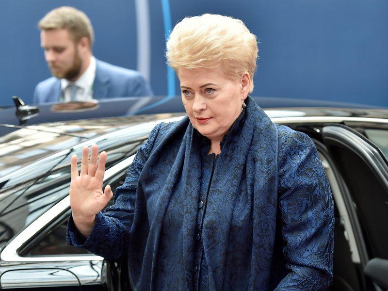 Naujas Lietuvos prezidentas: revoliucija ar įpėdinystė?