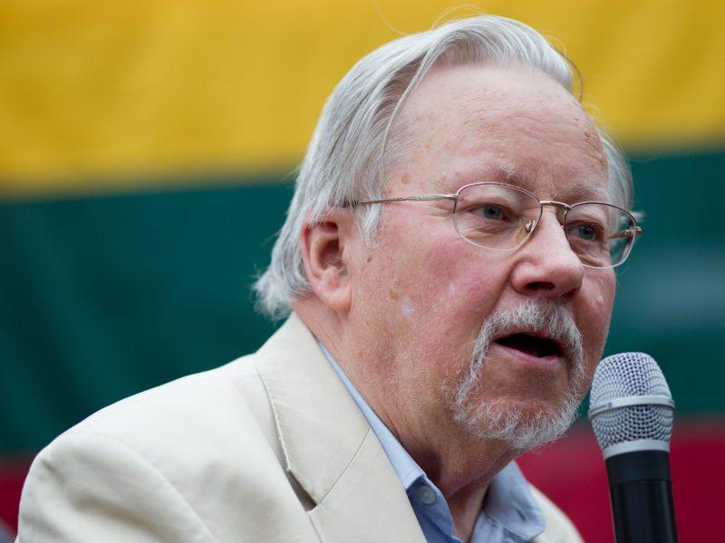 V. Landsbergis: įsisiautėjo būdas kovoti dėl valdžios nesivadinant partija