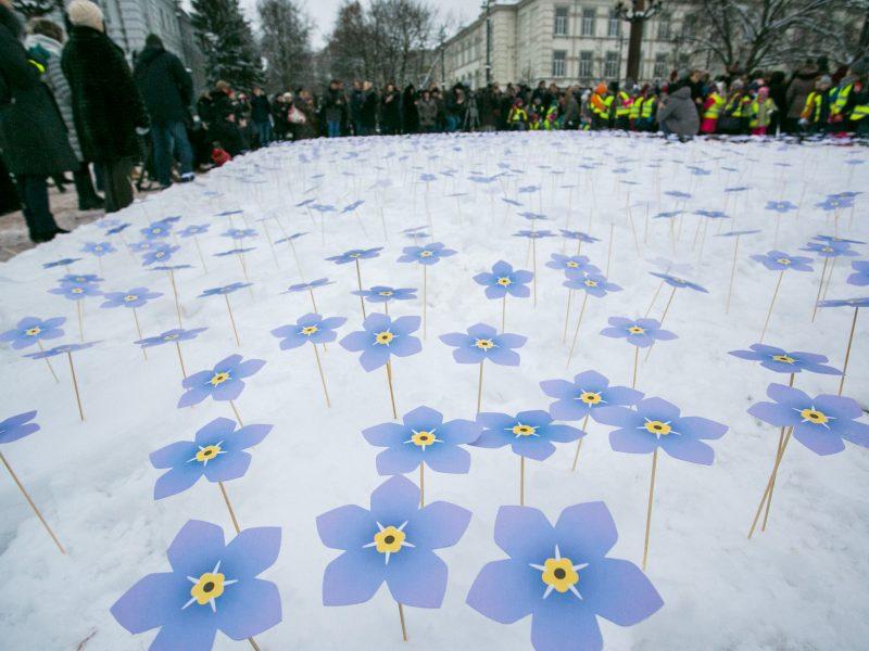Neužmirštuolių pievos sužydės Lietuvos miestuose ir miesteliuose