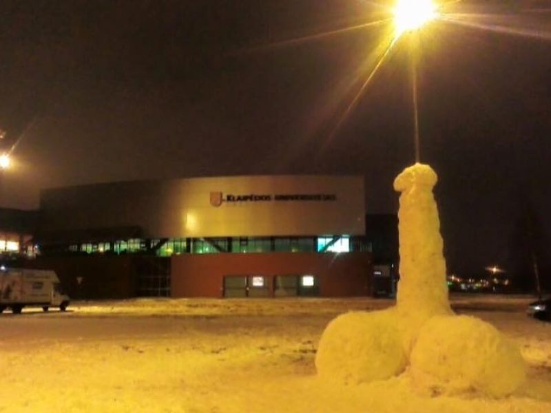 Šokiravo nepadori sniego skulptūra