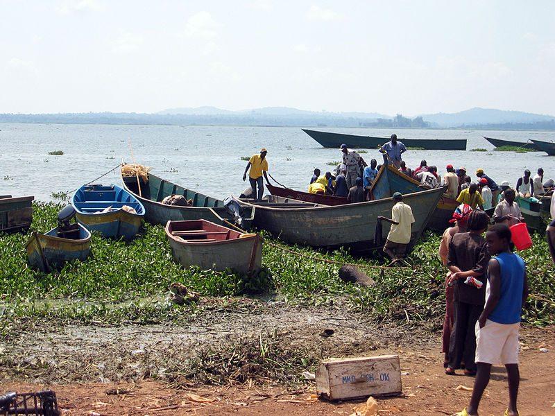 Viktorijos ežere apvirtus keltui žuvo daugiau nei 100 žmonių