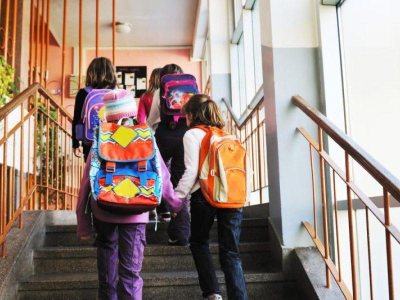 Vyriausybė nespręs ginčo dėl mokyklų statybų Pilaitėje