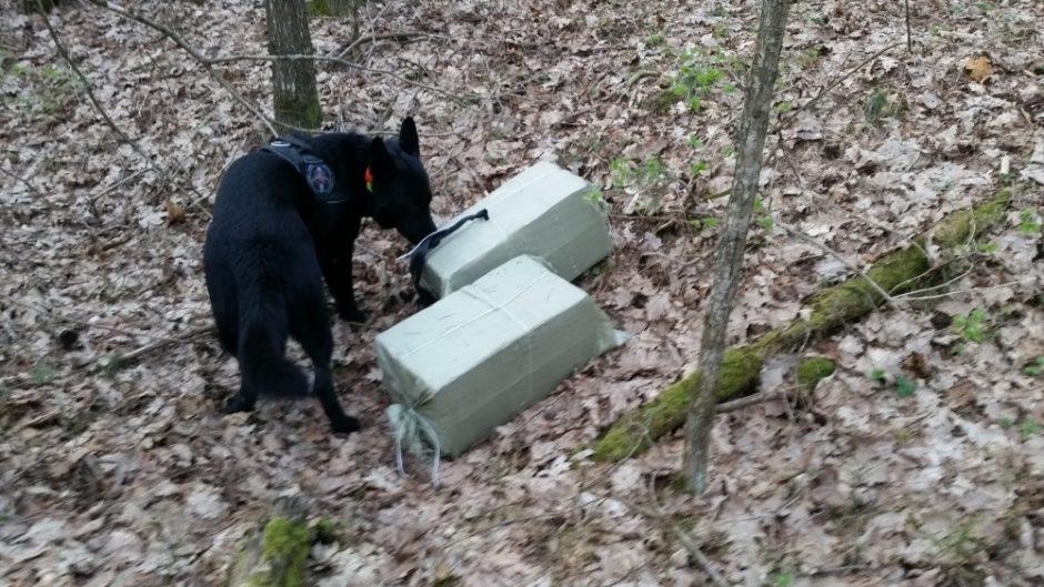 Kontrabandininkams sučiupti – ir tarnybinis šuo, ir ginklas