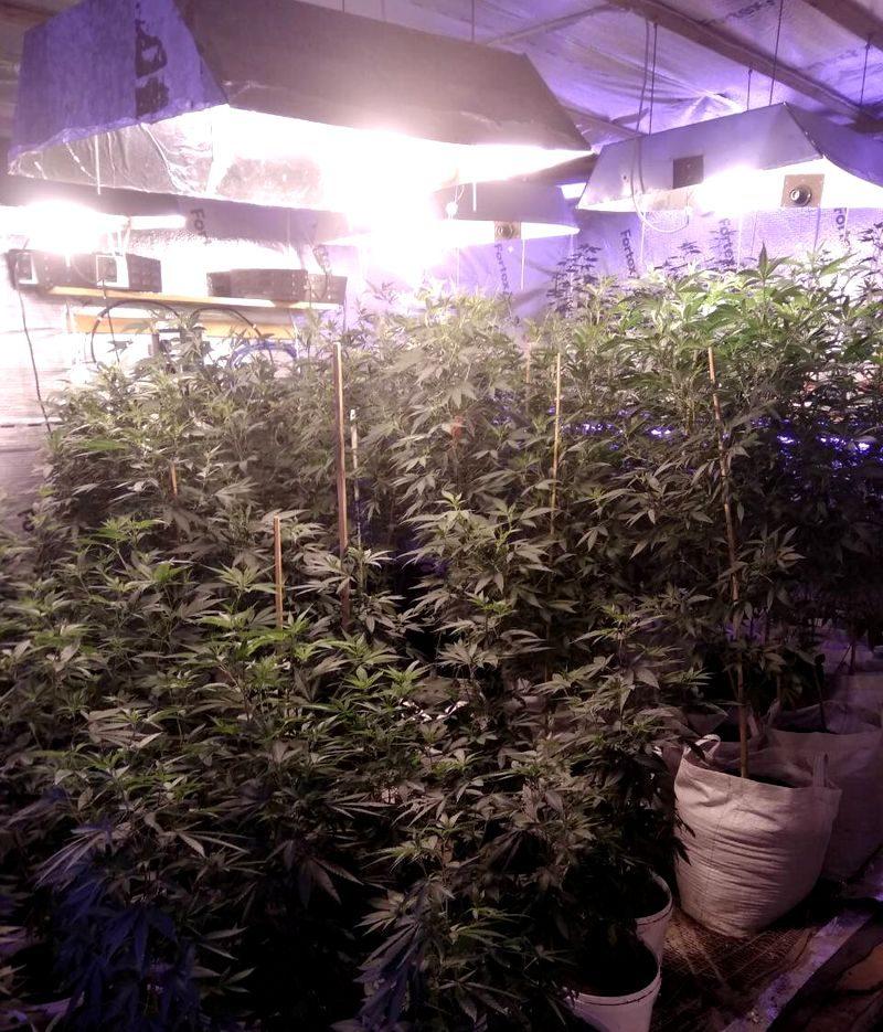 Dingusiojo ieškoję pareigūnai rado narkotikų laboratoriją