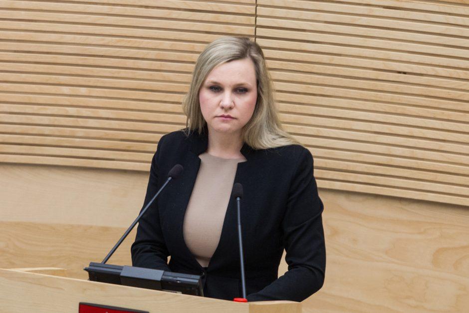 Seimas pritarė: mažesnės kartelės referendumui dėl dvigubos pilietybės nebus