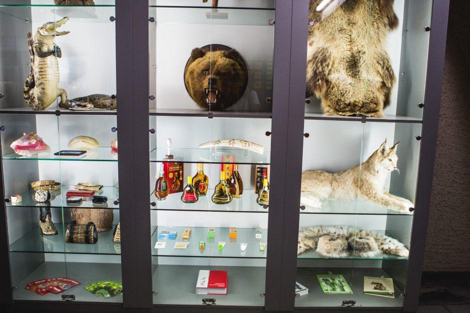 Kam muziejui reikalingi kailiniai?