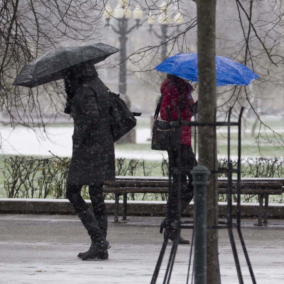 Laukia permaininga savaitė: nuo sniego iki atšilimo