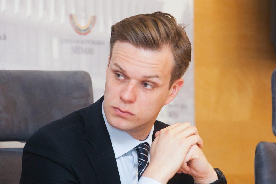 G. Landsbergis siūlo, kad A. Skardžiaus veiklą toliau tirtų kitas komitetas