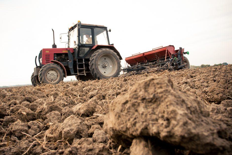 Seimas neapsisprendė, ar naikinti žemės įsigijimo saugiklius