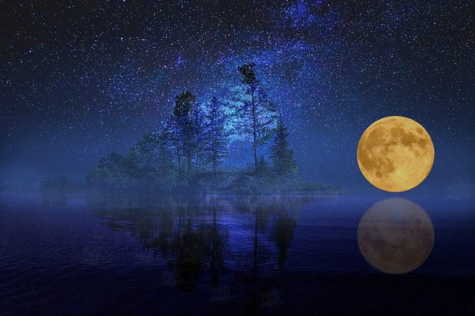 Dienos horoskopas 12 zodiako ženklų (sausio 21 d.)