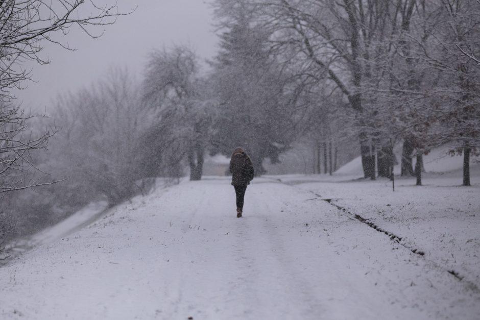 Orai: naktį žiema dar parodys savo nagus