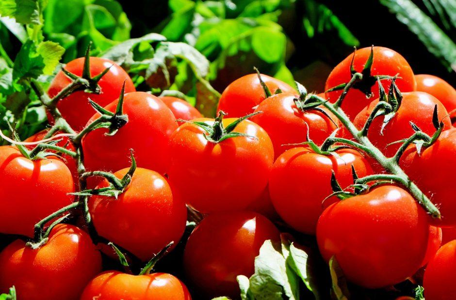 Pomidorų metas: keturi receptai pasimėgauti šiltnamio derliumi