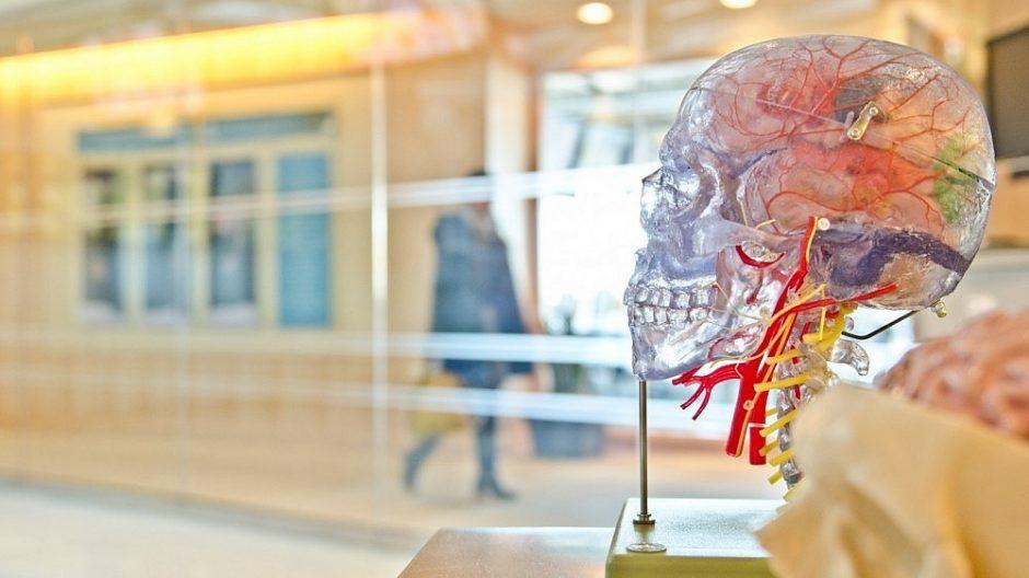 3D technologijos medicinoje: reikiamą organą tiesiog atspausdins