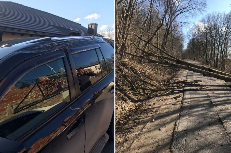 Per plauką nuo tragedijos: medžiai krinta ant automobilių