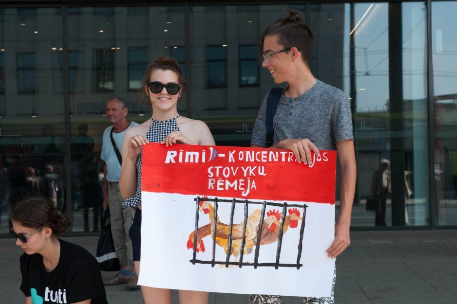 Gyvūnų teisių gynėjai išėjo ir į Kauno gatves