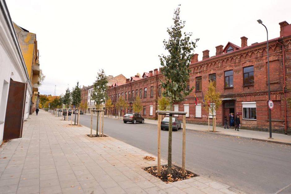 Pokyčiai Kaune: Miško gatvę jau puošia nauji medžiai