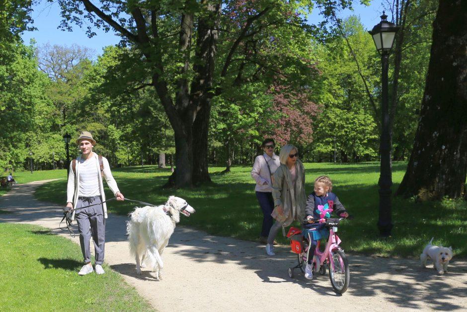 Į Raudondvario dvaro parką – su augintiniais ar be jų?