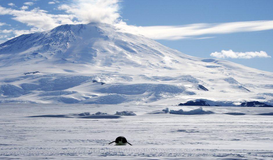 Po Antarktidos ledynais aptikta beveik 100 ugnikalnių