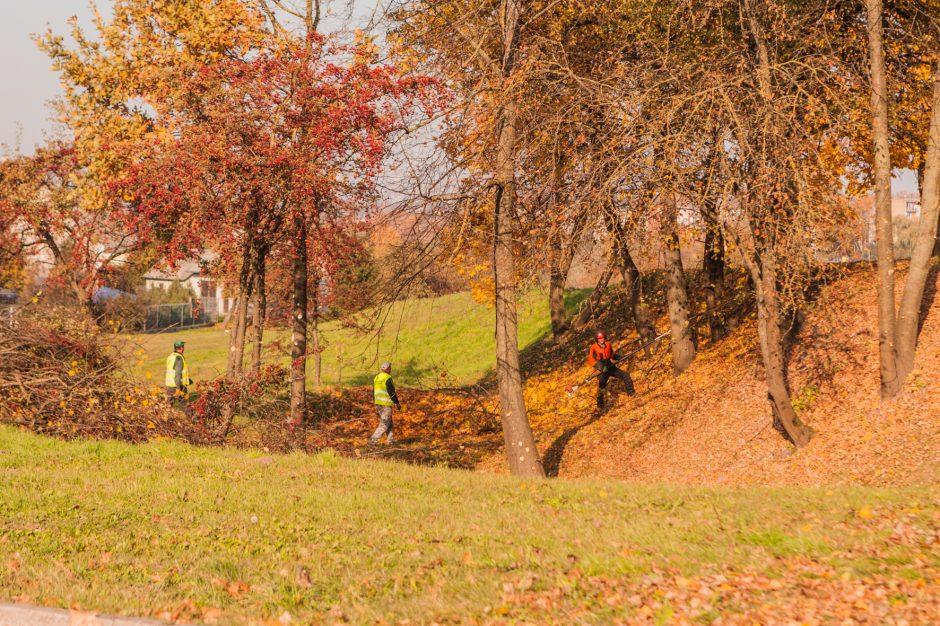 Jiesios piliakalnis taps draugiškesnis – pradėti rengti laiptai