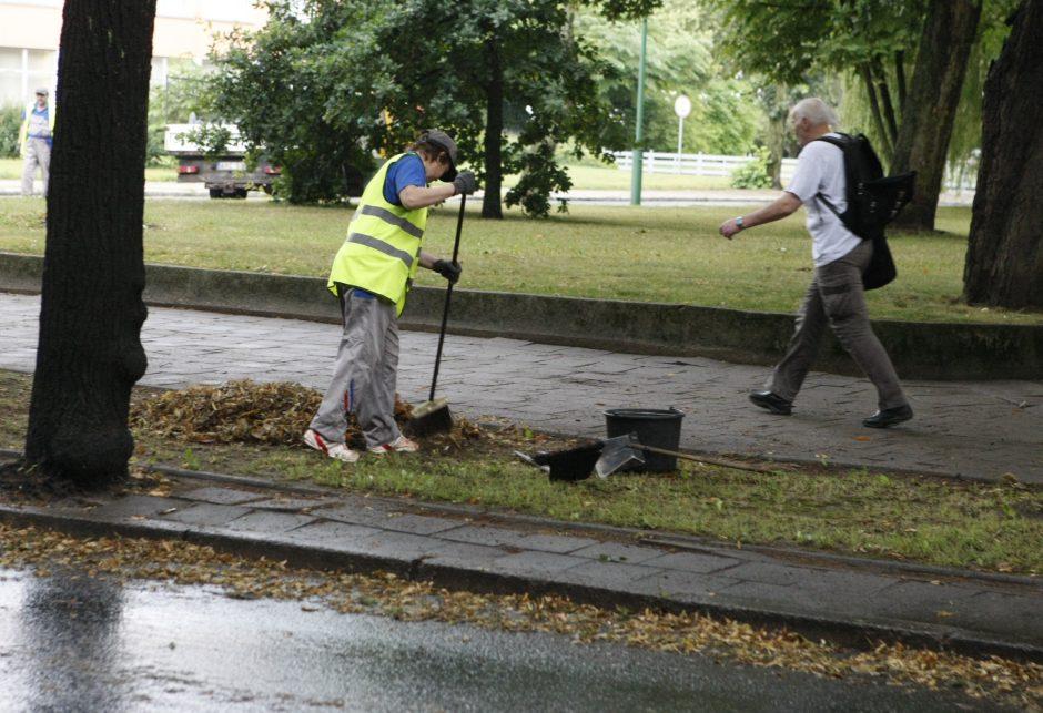 Spalio mėnesį Klaipėdoje – griežta žaliųjų atliekų tvarkymo kontrolė