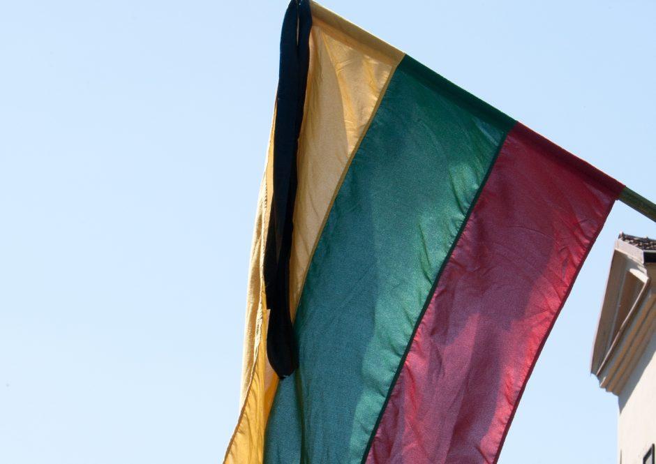 Įstaigos ir įmonės pamiršo iškelti vėliavas