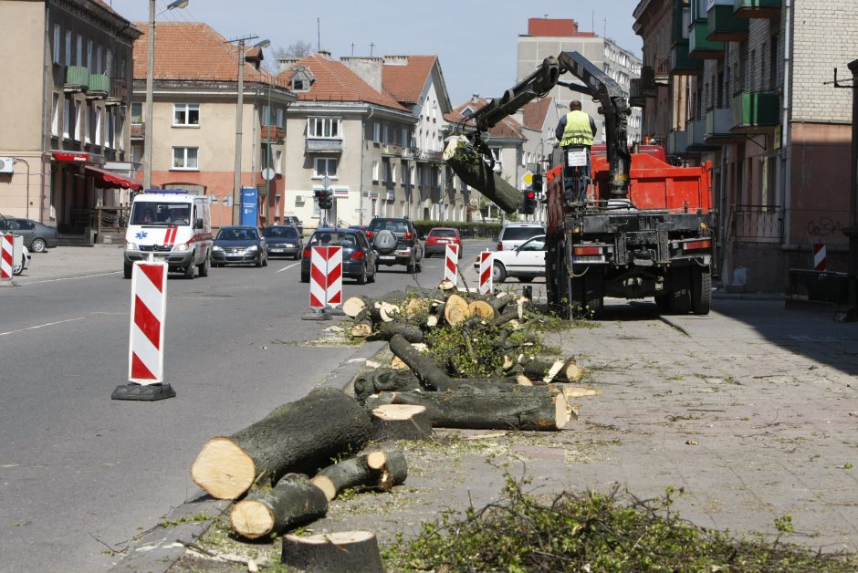 Medžiai išrūksta pro kaminą