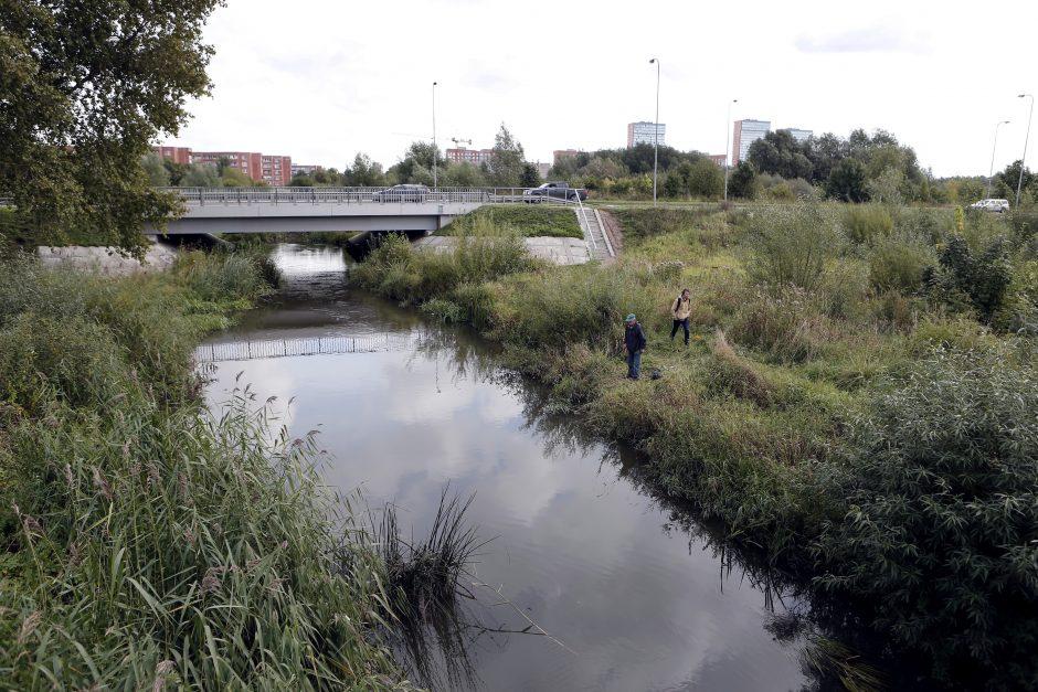 Apsaugai nuo potvynių – pylimai