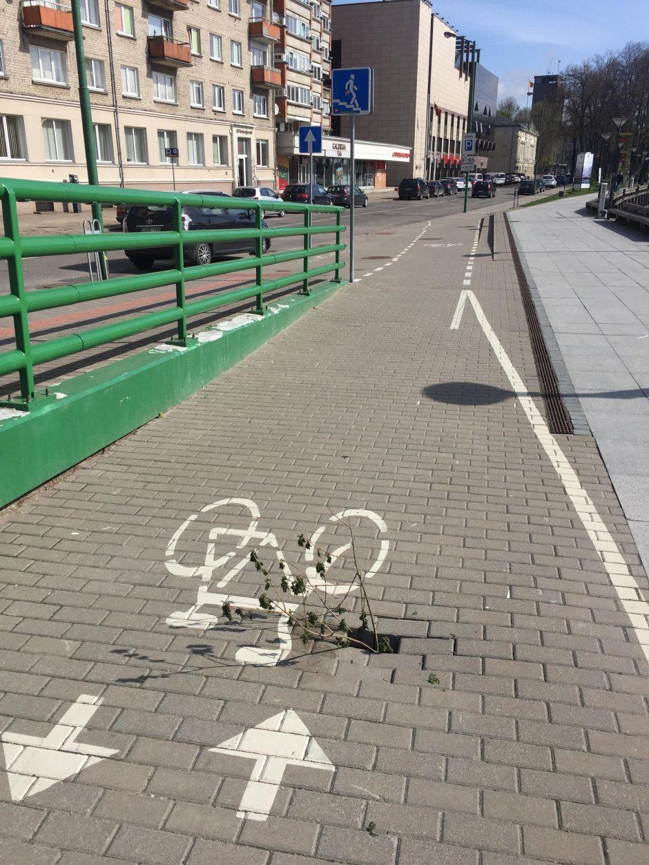 Smegduobė dviračių take