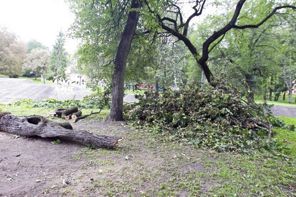 Škvalo padariniai Reformatų parke savivaldybės nedomina