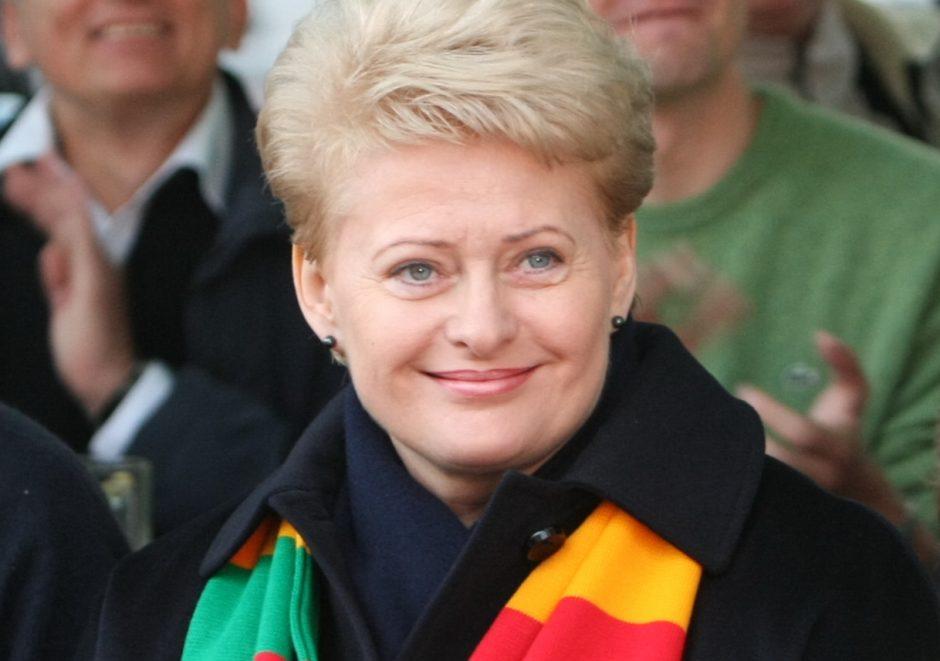 D.Grybauskaitė priims Vilniuje viešinčius Ukrainos opozicijos lyderius