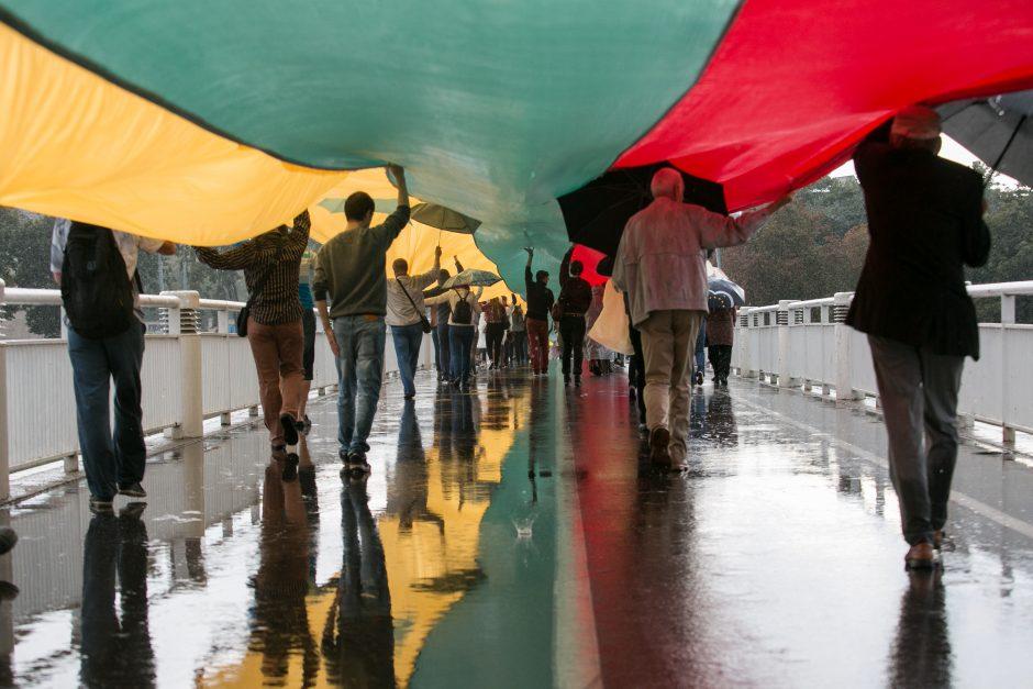 Žalgiriečiai ragina kelti Lietuvos vėliavą ne tik per šventes