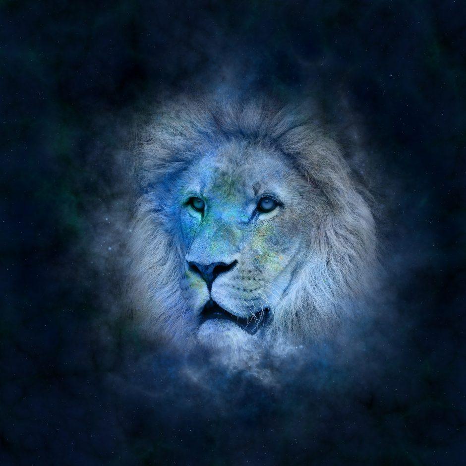 Dienos horoskopas 12 zodiako ženklų (sausio 8 d.)