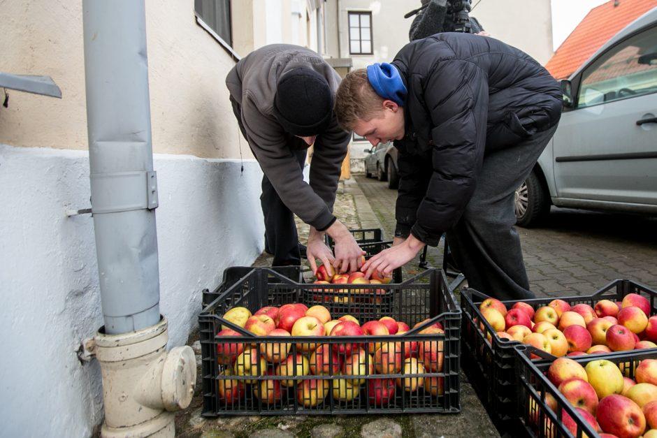 Ūkininkai Kauno kunigų seminarijai dovanojo žemės ūkio gėrybių