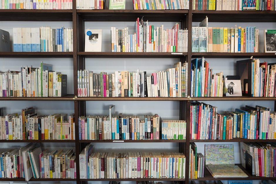 Ką skaityti žiemos vakarais? (knygų apžvalga)