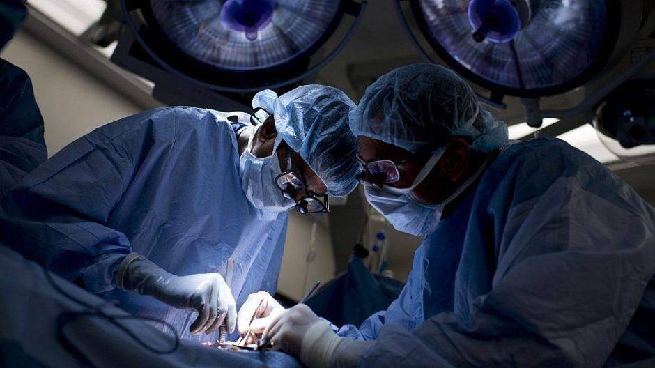Olandija pritarė įstatymui dėl visų piliečių užregistravimo organų donorais
