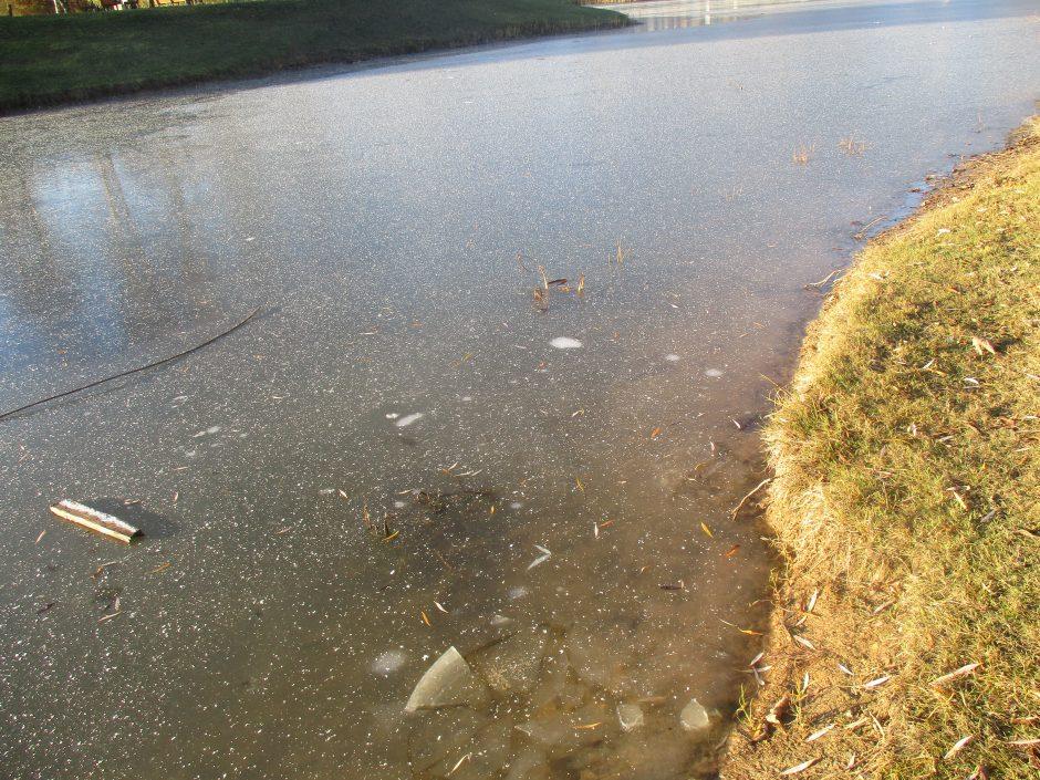 Kalniečių parko tvenkinio ledas plonas: įspėkite vaikus!
