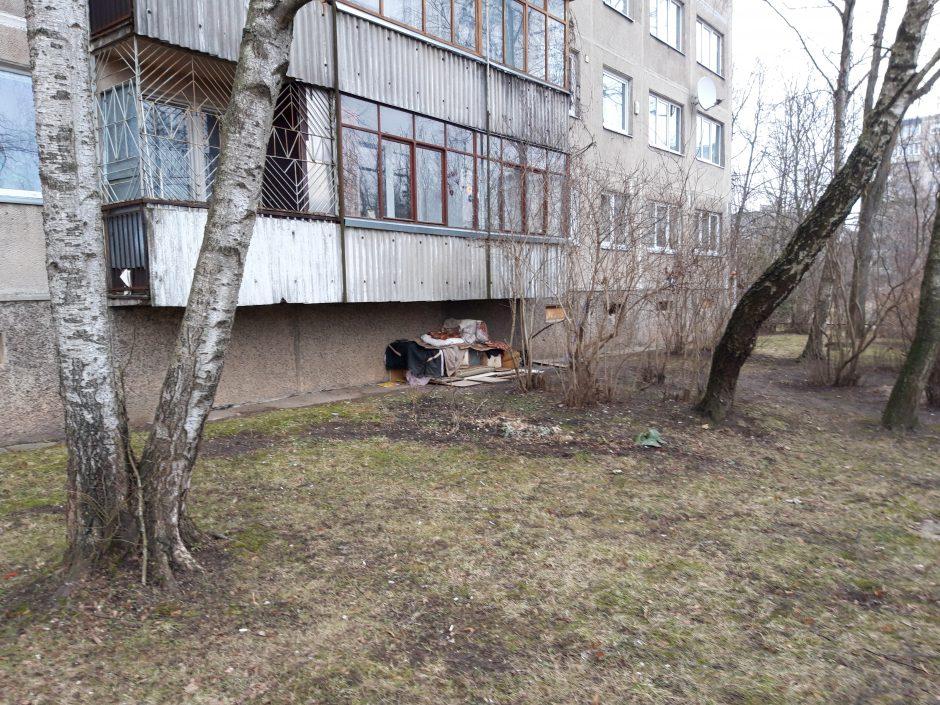 Paaiškėjo, kas gyvena po daugiabučio balkonu