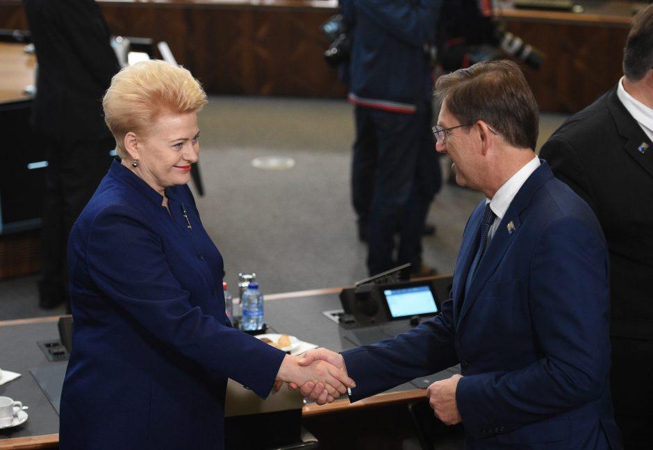 Prezidentė dalyvauja NATO vadovų susitikime