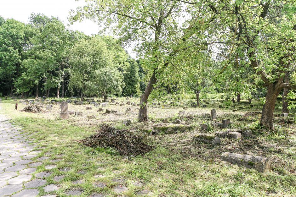 Žydų kapinės  - ir vėl dėmesio centre