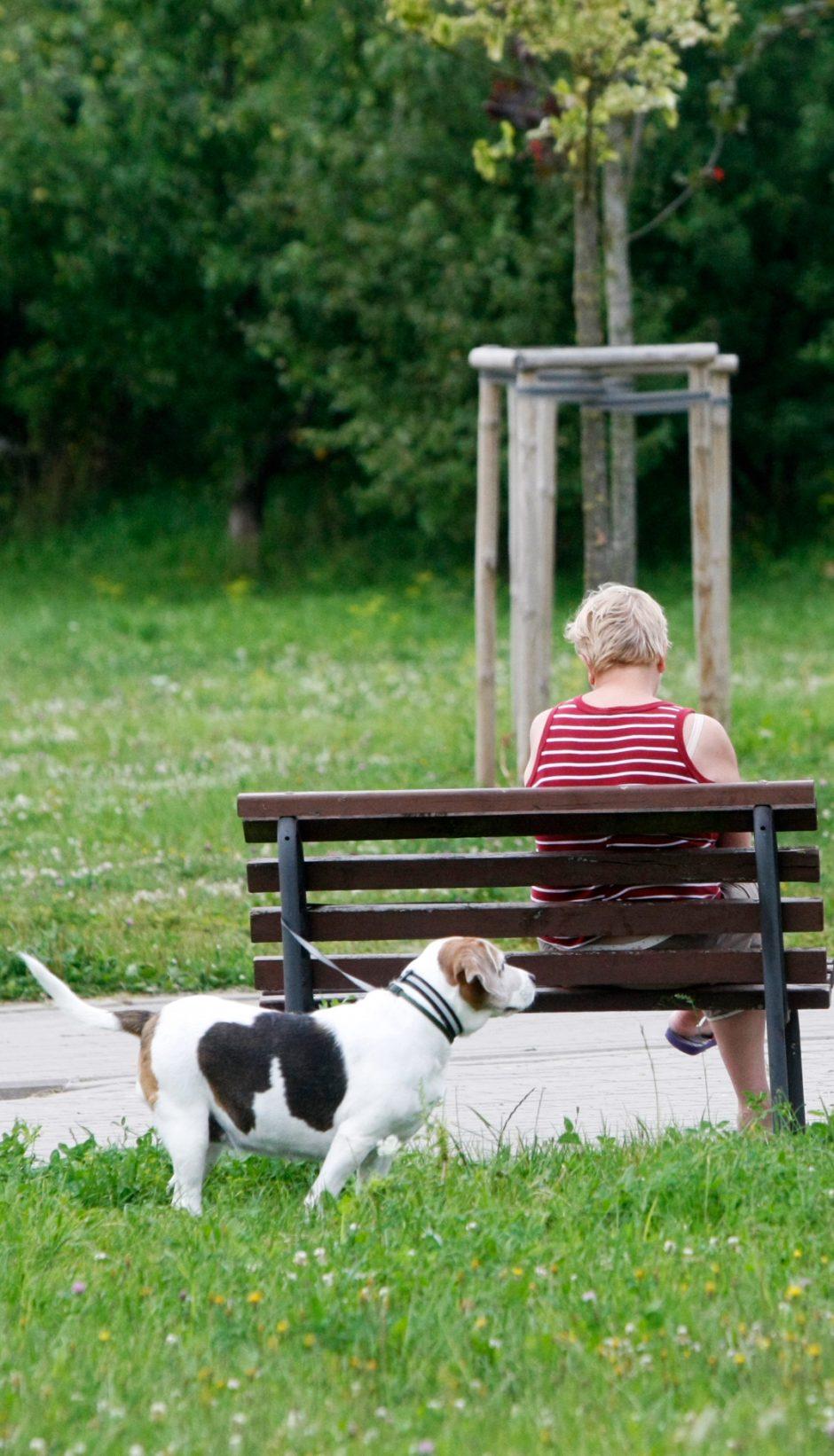 Sąjūdžio parkas – vieta košmarams