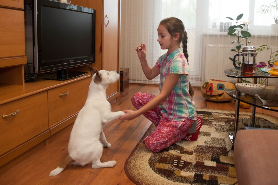 Naujas pomėgis neišsklaidė devynmetės meilės gyvūnams