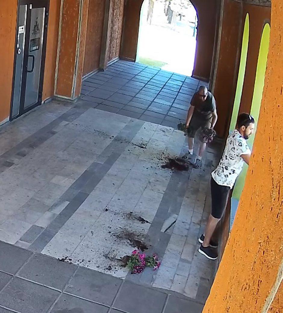 Vyrai nepaliko gėlių ant žemės