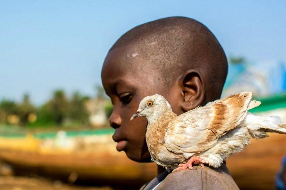 Afrikos dienos Kaune: egzotiški kvapai, nuotraukų paroda ir beduinų arbata